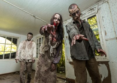 Chasseurs de Zombies - Le Clan des Chasseurs Livre II (1)